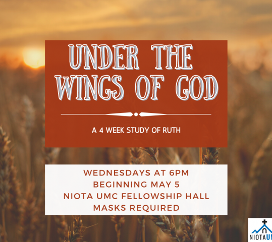 Wednesday Night Study on Ruth to begin May 5